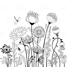 Abstract flowers and butterfly in black and white Abstrakte Blüten und Schmetterling in Schwarz-Weiß – Vektorgrafik<br> Abstract flowers and butterfly in black and white Doodle Art Drawing, Art Drawings, Abstract Flowers, Abstract Art, Abstract Portrait, Portrait Paintings, Acrylic Paintings, Botanical Line Drawing, Flower Doodles