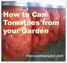 How to Can Tomatoes from your Garden