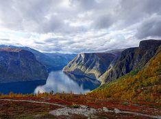 What is your favourite thing about autumn?   . 📷 @oddrunsandvik ) . . . .  #fjordsafari #flåmguideservice #flåm #norway #visitnorway #norge #bestofnorway #fjordnorway #fjords #unesco #worldheritage #love #nature #picoftheday #landscapesofnorway #beautiful #beautifuldestinations #magic #mittnorge #utno #visitflam #autumn #familyadventure #nature #mountains #loves_norway #travelstoke #wanderlust Visit Norway, Family Adventure, Mountain S, Safari, Wanderlust, Tours, Magic, Autumn, Landscape