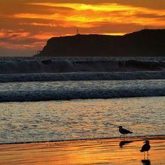 Coronado Beach, California USA, by Sunny Awazuhara-Reed.