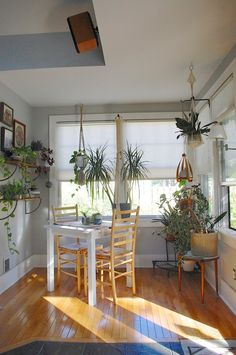 breakfast nook - love the natural light and plants! - apartment therapy - Lauren and Chad's Vintage Comfort Gravity Home, Kitchen Nook, Kitchen Plants, Apartment Living, Apartment Therapy, Apartment Plants, Interior Exterior, Breakfast Nook, Cozy House