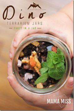 Dino Terrarium Jars