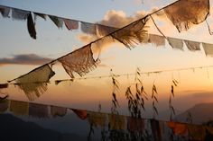 The Spellcoats (Prayer flags)