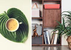 Urban Jungle Inspiratie : 91 besten urban jungle with mycs bilder auf pinterest