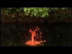 Andy Goldsworthy - Rivers and Tides