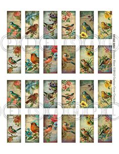 Vintage Birds 1 x 2 inch Domino Digital Collage Sheet Domino Art, Domino Crafts, Domino Jewelry, Scrabble Crafts, Vintage Sheets, Vintage Birds, Planner, Love, Craft Ideas