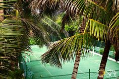 Tropical paradise tennis anyone? Sport Tennis, Play Tennis, All Over The World, Around The Worlds, Tulum Beach, Tennis Tournaments, Daughters Of The King, Beaches In The World, Caribbean Sea