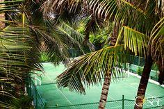 Tropical tennis court.