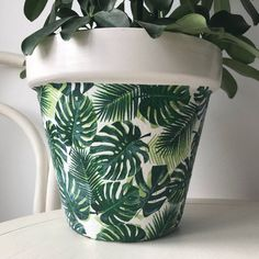 Palm Leaves and White Terracotta Pot Showcase your plant in the green palm leaves pot, very eye-catching!This stunning terracotta planter has been hand-painted white and decoupaged with a green palm print, varnished to seal and waterproof. Painted Plant Pots, Terracotta Plant Pots, Painted Flower Pots, House Plants Decor, Plant Decor, Pottery Painting Designs, Flower Pot Design, Flower Pot Crafts, Cactus Y Suculentas