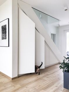 Unser unter der Treppe schafft optima… Smart storage space under the stairs! These simple cabinet doors from Vicky_Hellmann inspire us right! Home Stairs Design, Interior Stairs, Home Interior Design, House Design, Staircase Storage, Stair Storage, Basement Stairs, House Stairs, Glass Stairs