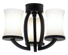 Lighting for Home or Commercial - Chandeliers, Ceiling Fans, Light Fixtures - Williams Lighting Galleries, Roanoke, Va.