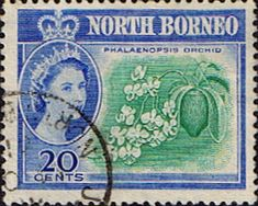 North Borneo 1961 SG 397 Phalaenopsis  Fine Used Scott 286 Other Malayan Stamps HERE