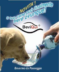 BeviQui