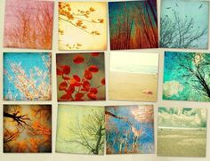 Home decor spring decorating garden pastel trees beach by bomobob, $40.00 >>  Beautiful collection of photos!