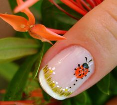 "cute! from Bonnie Gokey's ""Funky French Tip Nails"" board. love so many of the designs there."