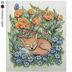 Vibes de domingo! Preguicinha! By @morena_vajak  #mariatrolle #blomstermandala #polychromos #fox #botanical #flowers #desenhoscolorir
