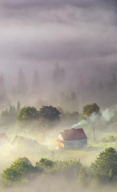 Misty morning by Marcin Sobas (Poland)