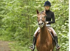 Five ways to school your horse when hacking