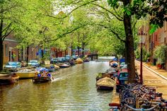 A great family activity is sailing through the canals and waterways of Amsterdam. For more info about rental boats in Amsterdam go to: https://www.meetthecities.com/guide/amsterdam/amsterdam-activities-canal/