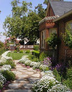 English cottage garden…Love the broken stone walkway! Small Gardens, Outdoor Gardens, Stone Walkway, Flagstone Path, My Secret Garden, Dream Garden, Garden Paths, Pathways, Cottage Style