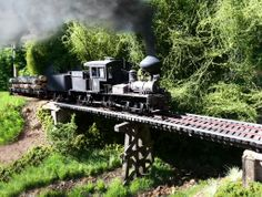 Mind if she smokes? New diorama for my 3 truck shay - On30 - Model Railroad Forums - Freerails