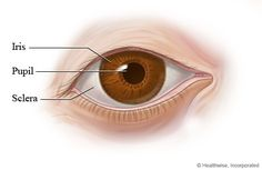 PERRLA:    Definition: When a physician or nurse is examining a  patient's eyes, PERRLA is an acronym used to describe the look and  function of the eyes. It stands for:   Pupils   Equal   Round   Reactive to   Light and   Accommodation [which means the ability of the eyes to focus on objects that are close up and faraway]     An eye exam is done to check how someone's nervous system is  functioning, especially after a head injury or during serious illness.  An eye exam would be abnormal if…