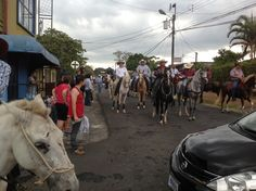Gran Tope Cuidad Colon 2013 at parade organization