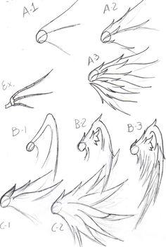 Drawing wings
