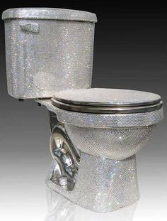 Toilet made with 72,000 pieces of Swarovski cut crystal.  Not sure I could get the man convinced!