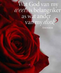 Wat God van my weet, is belangriker as wat ander van my dink. All Quotes, Bible Quotes, Bible Verses, Afrikaanse Quotes, Special Quotes, Word Pictures, Amai, Printable Quotes, Positive Thoughts