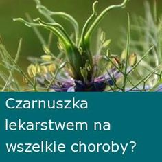 Nie dokarmiaj raka! | zdrowepasje.pl Spices, Medical, Herbs, Healthy Recipes, Fruit, Cooking, Plants, Food, Herbalism