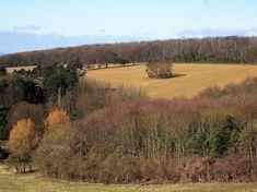 England, Yorkshire Dales, Autumn, Yorkshire #england, #yorkshiredales, #autumn, #yorkshire
