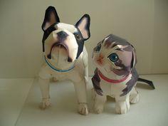 Cat & Dog (Free Model)