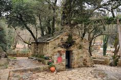 """17 trees growing on the roof of a church! * St: Theodora Church - Village """"Bata"""" in Arcadia - Greece Arcadia Greece, My Father's House, River I, Fire Signs, Unusual Things, Growing Tree, Oak Tree, Abandoned Buildings, Kirchen"""