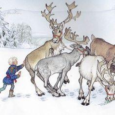 The Wild Christmas Reindeer by Jan Brett #christmas #books #janbrett