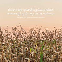 Geloven is zeker zijn van de dingen waar je op hoopt, ervan overtuigd zijn dat wat je niet ziet, toch bestaat. Hebreeën 11:1 #Geloof, #Hoop https://www.dagelijksebroodkruimels.nl/hebreeen-11-1/