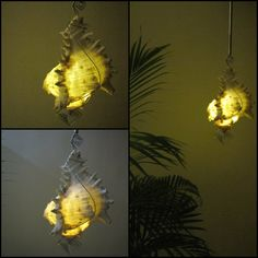 Conch Shell Pendant Night Light