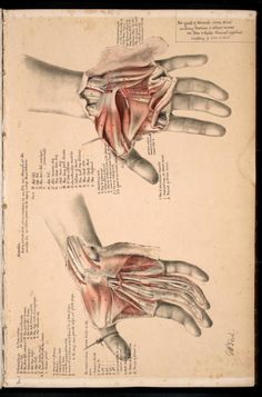 george henry ford, 1867. Know your carpal tunnel