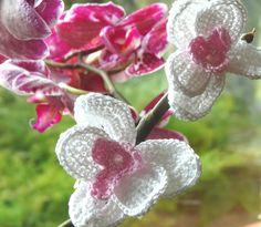 Kwiaty storczyka na szydełku - instrukcja wykonania krok po kroku Dandelion, Knit Crochet, Knitting, Flowers, Plants, Diy, Crocheting, Amigurumi, Crochet