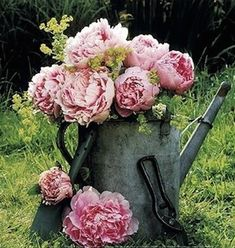 Casual Loves Elegance, a great rustic can for the elegant flowers