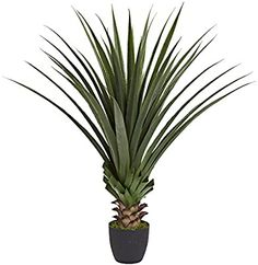 Amazon.com: Nearly Natural Spiked Agave Plant, 4': Home & Kitchen