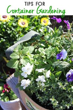 Simple and practical ideas and tips for container gardening.
