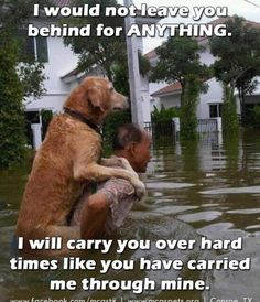 I will carry you...