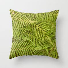Ferns Throw Pillow by RichCaspian - $20.00 #case #cover #throwpillow #homedecor #society6 #forest #ferns #green #nature #foliage #plant #succulent #cacti #pretty #texture #pattern #shape #pillows #bedding #comfort #earth #earthy #zen #pillows