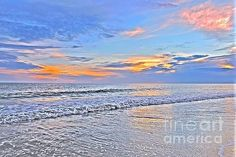Shelia Kempf - Art, Prints, Posters, Home Decor, Greeting Cards, and Apparel