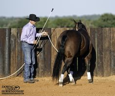 Groundwork Exercise #10: Sidepassing on the Fence  Goal: To be able to sidepass the horse down a fence line using your body language and energy from the Handy Stick.  More about the exercise: https://www.downunderhorsemanship.com/Store/Product/MEDIA/D/253/