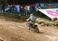 Remy Van Rees