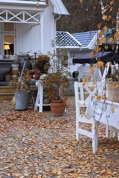 Pumpkins and outdoor decorations....