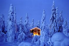 Bing fotos: Snowy spruce forest with log cabin in Riisitunturi National Park, Finland (© Jan Tove Johansson/Getty Images) Winter Szenen, Winter Magic, Winter Holiday, Winter Coat, Petits Cottages, Magic Places, Photos Voyages, Cabins In The Woods, Best Vacations