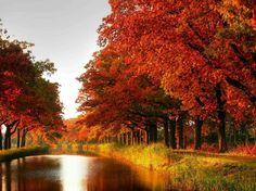 Новые фотографии красоты природы.